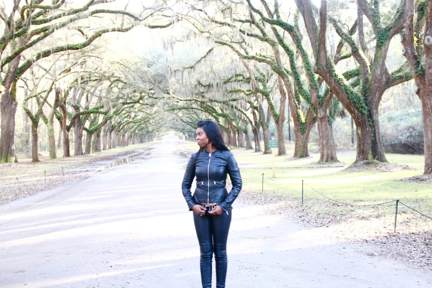 Savannah plantations